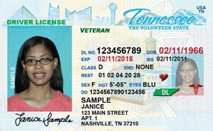 TN Driver's License Sample