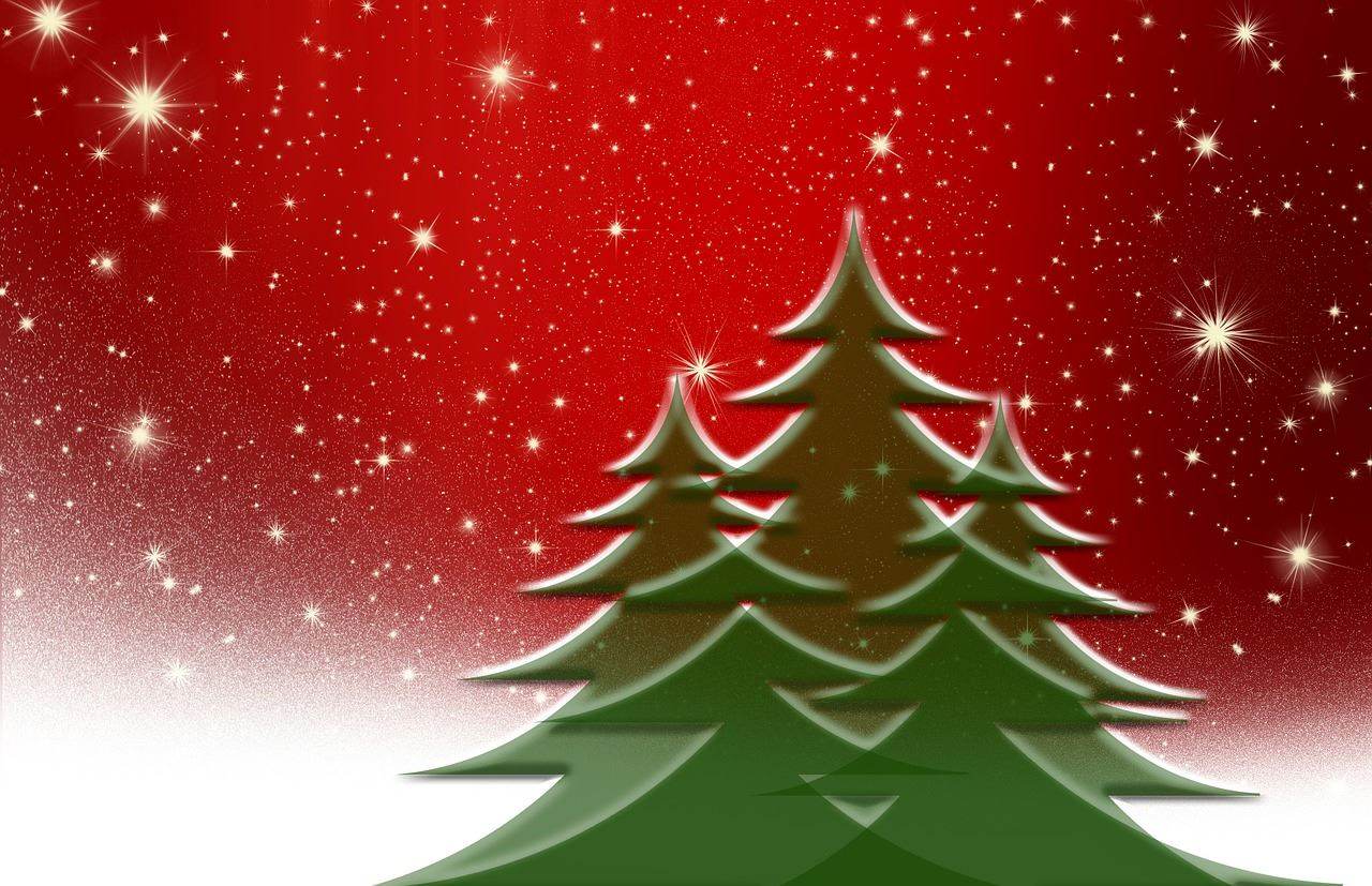 Christmas Trees on Red Background